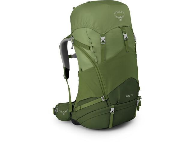 Osprey Ace 75 Plecak Dzieci, venture green